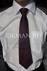 Фиолетовый галстук для мальчика