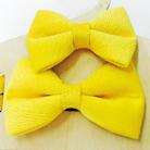 Парные ярко-желтые бабочки-галстуки для папы и сына