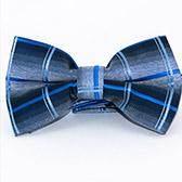 Бабочка-галстук синего цвета в клеточку